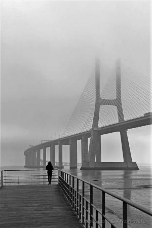 /Fotografando a Bruma , a Ponte e o Tejo