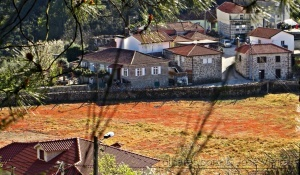 Paisagem Natural/Minha aldeia