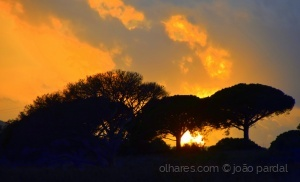 /Um Pôr do Sol de Janeiro - 2