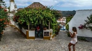 /S. Thiago do Castelo-Turismo de Habitação