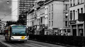 /O Autocarro Belga (nova edição)