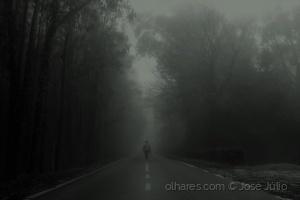 /Mist morning