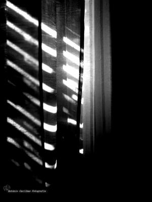 Abstrato/A Sombra não existe (ler)