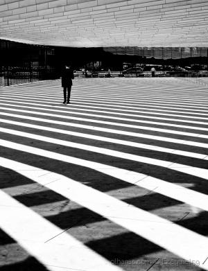 Paisagem Urbana/Zebra