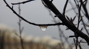 /Os dias chuvosos também têm a sua beleza...