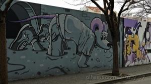 /Rato das fossas