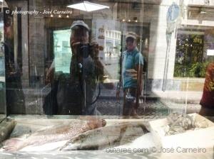 """/Photo #2396 """" PEIXE FRESCO ... na cidade """""""