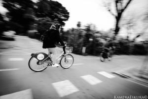 Gentes e Locais/Riding a bicycle