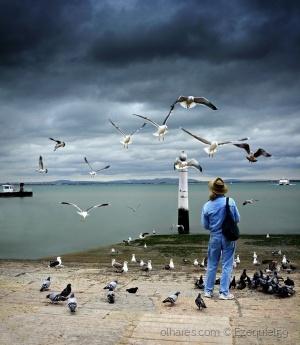 Gentes e Locais/O encantador de pássaros (Ler descrição)