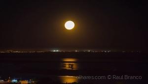 Paisagem Natural/Noite de Luar - Rio Tejo
