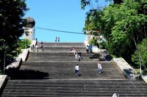 /Coimbra CXXXVII (Escadas Monumentais)