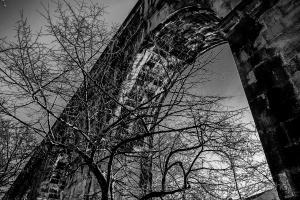 /O ramos e os arcos...