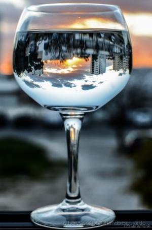 /Um copo de Saudade.