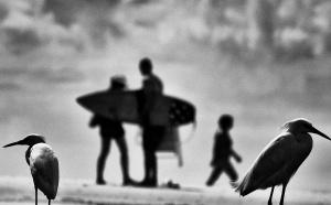 Fotojornalismo/Vem a praia