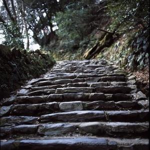 /Caminhos de Quioto (6)