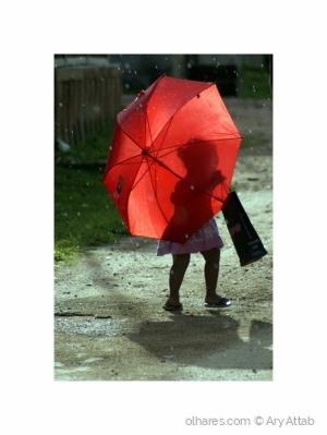 /Num dia de chuva