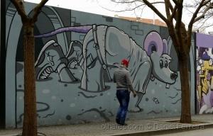 /Grafiti 5