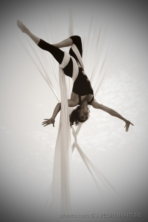 /ACROBATIC PROJECT 88
