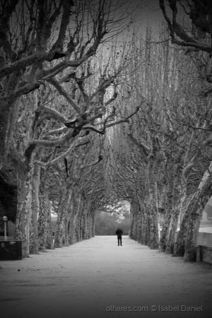 Gentes e Locais/Um passo na solidão