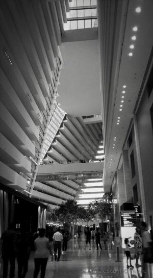 Gentes e Locais/Marina Bay Sands