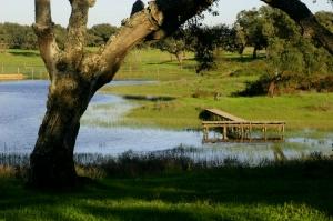 Paisagem Natural/Barroca d'Alva I