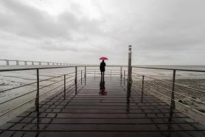 Retratos/Num dia de chuva #4