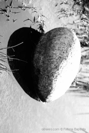 /Um coração na lama