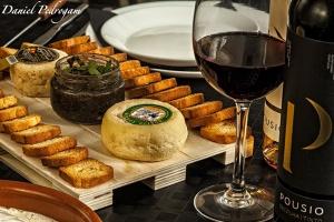Gastronomia/queijo vinho e tostas