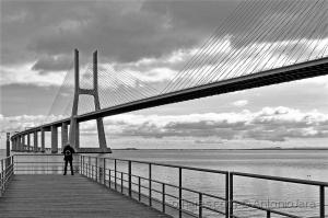 /Admirando o Tejo e a Ponte Vasco da Gama