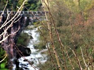 Outros/Ponte de Cabrum...ao fundo