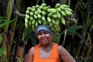 Retratos/Banana