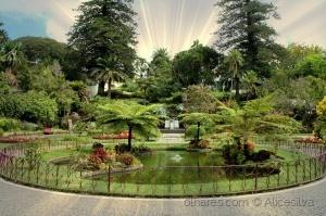 /Jardim Duque da terceira.....