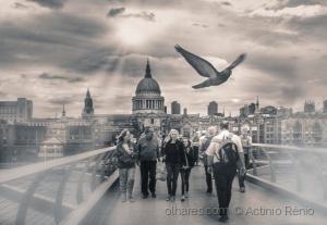 /Millennium Bridge,