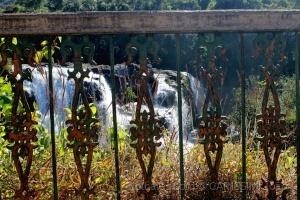 /Dia mundial da água - PC/MG