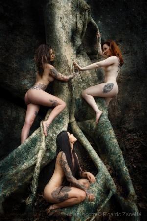Nus/Tree Fairies