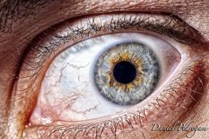 Macro/os teus olhos pelos meus olhos