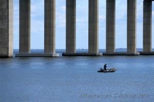 /Pescador junto à ponte Vasco da Gama