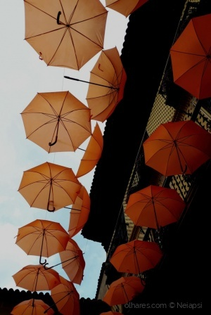 Outros/Guarda_chuvas ao céu!