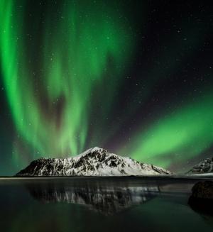 /Aurora - Lofoten