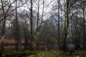 Paisagem Natural/Passeios à beira rio...