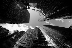 Outros/The city.