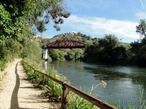 Paisagem Natural/Jardim Ribeirinho do Mira