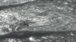 /Sobre as águas