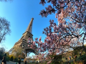 /Primavera em Paris