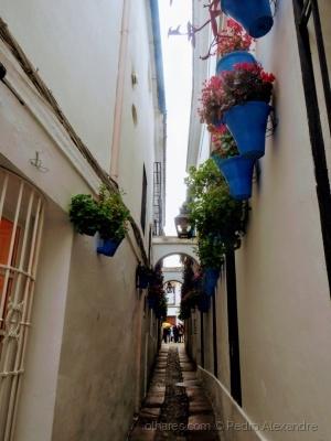 /Pelas ruas de Córdoba