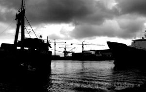 Gentes e Locais/Porto de Aveiro I