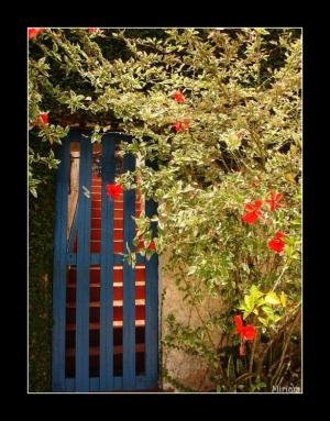 /o portão