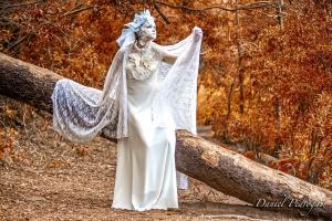 Retratos/Rainha do Inverno