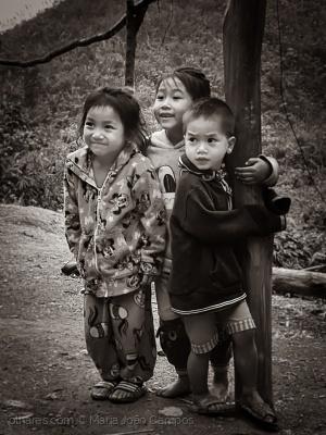 /Trio