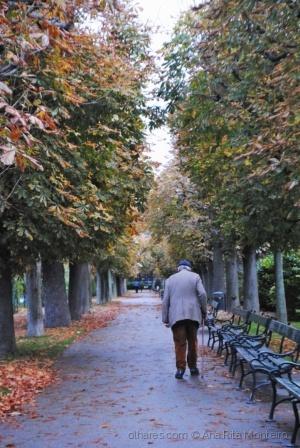 Outros/Um jardim em Viena